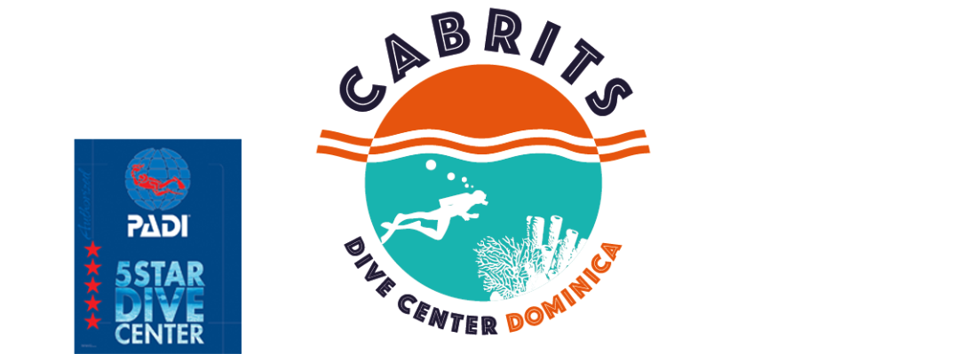 Cabrits Dive Center, PADI 5 Star Dive Center, Aqualung Partner Center